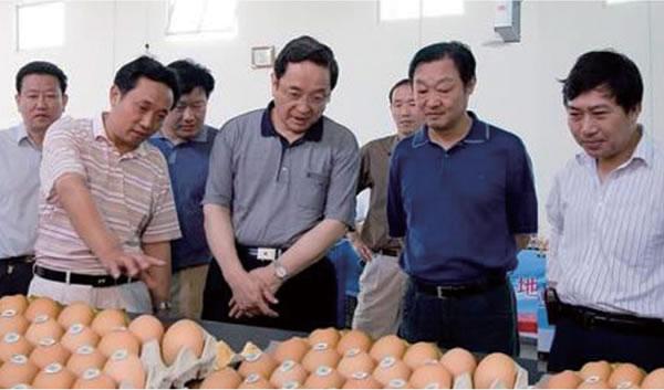 中共中央政治局常委俞正声、全国政协主席视察公司