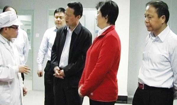 省委副书记张昌尔视察公司