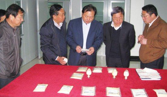 市委常委、常务副市长胡功民视察公司