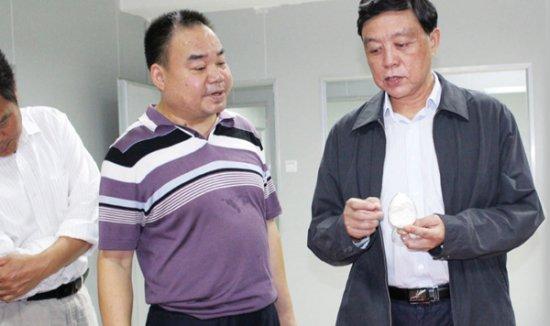 市政协副主席贺明海视察公司
