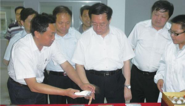 省委副书记、省长王国生视察公司