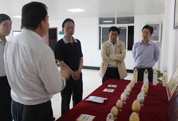 省委第七巡视组组长巫军莅临亚博app官网公司调研教育实践活动