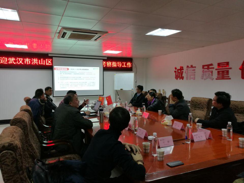 武汉洪山区领导莅临亚博app官网考察